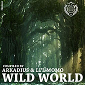 Wild World by Arkadius & Li´l Momo by Various Artists