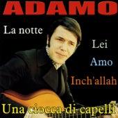 La notte by Adamo