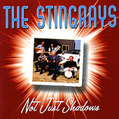 Not Just Shadows by The Stingrays