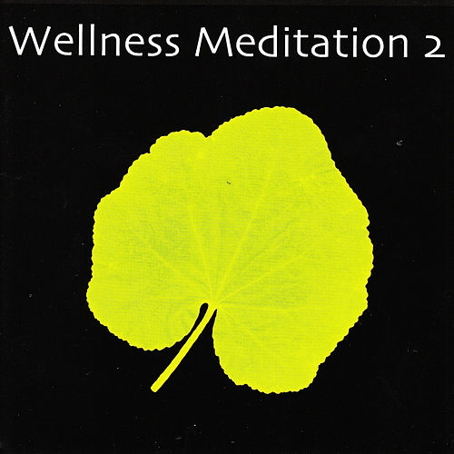 Wellness Meditation 2 by Various Artists