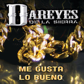 Me Gusta Lo Bueno by Los Dareyes De La Sierra