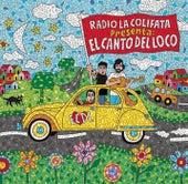 Eres Tonto by El Canto Del Loco