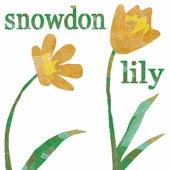 Snowdon Lily by Jeb Loy Nichols