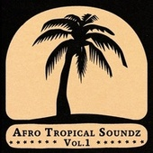 Afro Tropical Soundz Vol.1 by Various Artists
