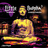 Little Buddha 3 by Various Artists