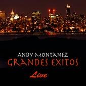 Grandes Exitos - Live by Andy Montañez