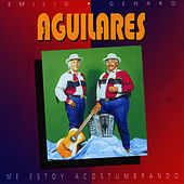 Me Estoy Acostumbrando by Los Aguilares
