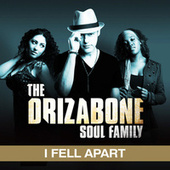 I Fell Apart (single) by Drizabone Soul Family