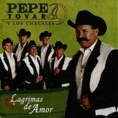 Lagrimas De Amor by Pepe Tovar Y Los Chacales