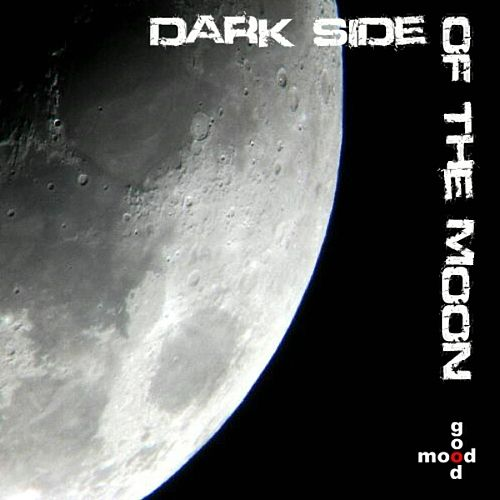 Dark Side Of The Moon by Various Artists