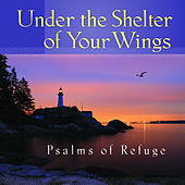 Under the Shelter of Your Wings Psalms of Refuge by Mark Baldwin
