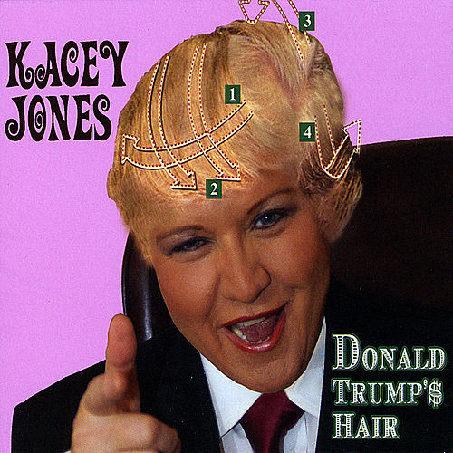 Donald Trump's Hair by Kacey Jones