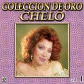 Chelo Coleccion De Oro, Vol. 1 - Tu Y La Mentira by Chelo