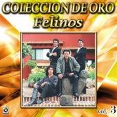 Felinos Coleccion De Oro, Vol. 3 - Morena Tenias Que Ser by Felinos