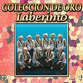 Laberinto Coleccion De Oro, Vol. 1 - Abrigame by Laberinto