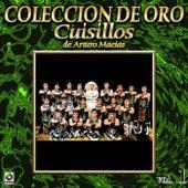 Cuisillos De A. Macias Coleccion De Oro, Vol. 1 - Como Sufro by Banda Cuisillos