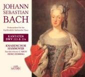 Bach: Festmusiken für das Kurfürstlich-Sächsische Haus by Various Artists