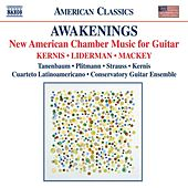 Awakenings: New American Chamber Music for Guitar by Various Artists