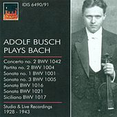 Bach, J.S.: Violin Music - Bwv 1001, 1004, 1005, 1016, 1017, 1021, 1042 (Busch) (1928-1943) by Various Artists