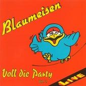 Voll die Party Vol. 2 by Blaumeisen