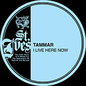 I Live Here Now by Tammar