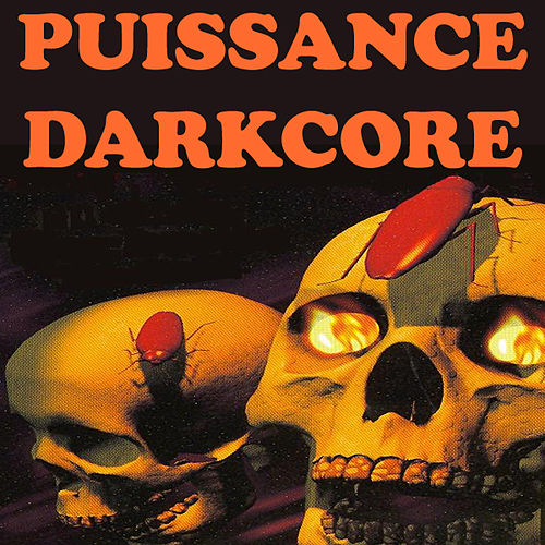 Puissance Darkcore by Various Artists