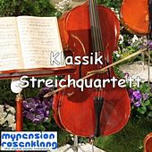 Classical String Quartet - Klassik Streichquartett by Various Artists