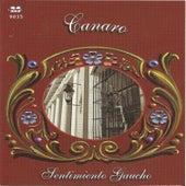 Sentimiento Gaucho - Canaro by Canaro