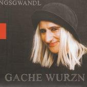 Gache Wurzn by Georg Ringsgwandl