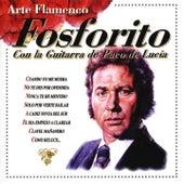 Arte Flamenco Vol. 4 by Fosforito