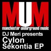 Sekontia EP by DJ Meri