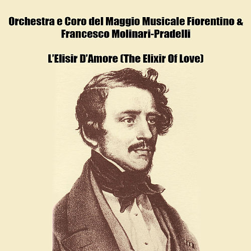 L'Elisir D'Amore (The Elixir Of Love) by Various Artists