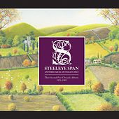 Another Parcel of Steeleye Span (Their Second Five Chrysalis Albums 1976-1989) by Steeleye Span