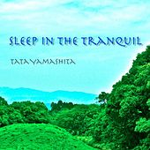 Sleep In the Tranquil by Tata Yamashita