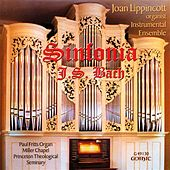 Bach: Sinfonia by Joan Lippincott