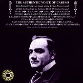 Caruso: The Authentic Voice of Caruso by Enrico Caruso