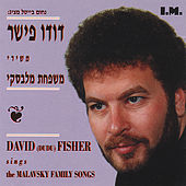 The Malavsky Songs by Dudu Fisher