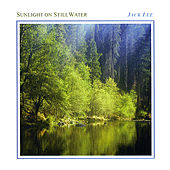 Sunlight on Still Water by Jack Lee