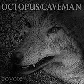 Coyote by Octopus