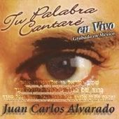Tu Palabra Cantaré by Juan Carlos Alvarado