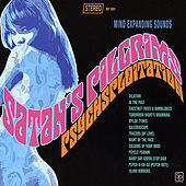 Psychsploitation (Vinyl) by Satan's Pilgrims