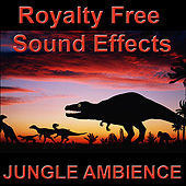Jungle Ambience, Dinosaurs, Monsters, and Animals by Sound Effects Royalty Free