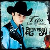 Perverso by Los Reyes Del Camino