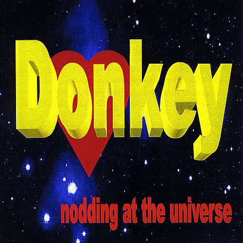 Nodding At the Universe by Donkey