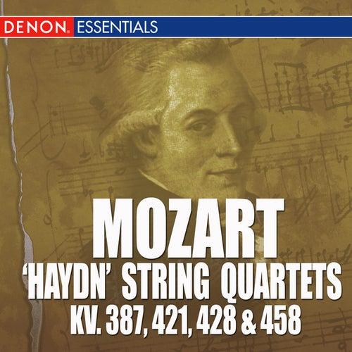 Mozart: 'Haydn' String Quarets - KV. 387, 421, 428 & 458 by Mozarteum Quartet Salzburg