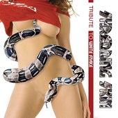 Shredding Skin - Whitesnake Tribute by Various Artists