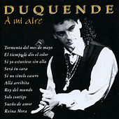 A mi aire by Duquende