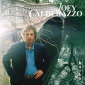 Haiku by Joey Calderazzo