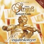 Wiener Johann Strauß Konzert-Gala by Various Artists