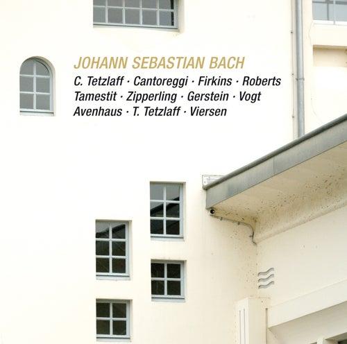 Johann Sebastian Bach: Brandenburg Cto No 6; Viola da Gamba Sonata BWV 1029; Trio sonata BWV 1079; Violin sonata in F minor BWV 1018 by Various Artists